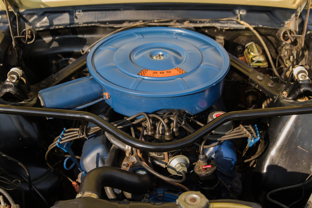 1966 Ford Mustang No trim field 2 Door 2 Plus 2 Fastback for sale