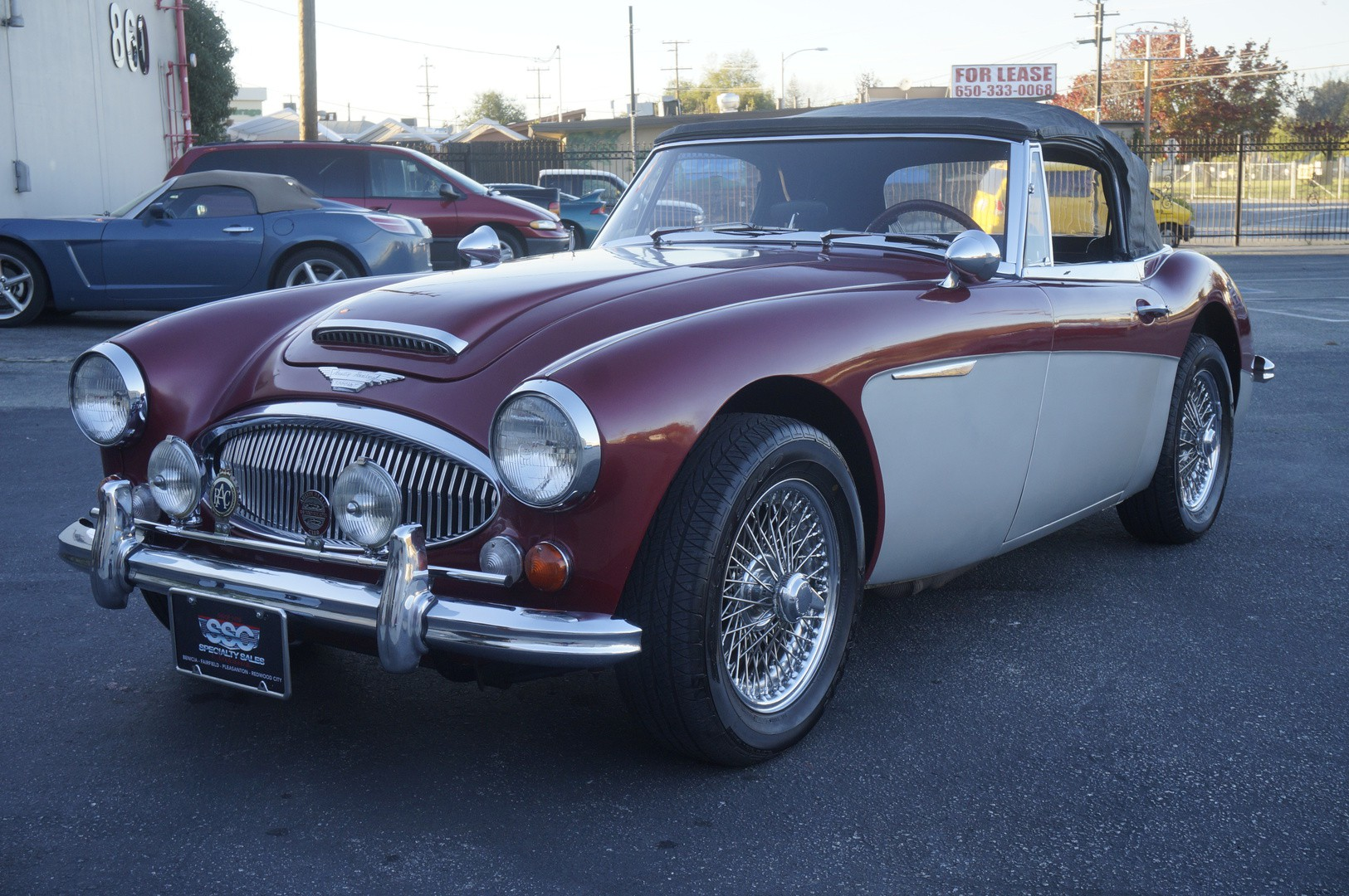 austin healey vehicles specialty sales classics. Black Bedroom Furniture Sets. Home Design Ideas